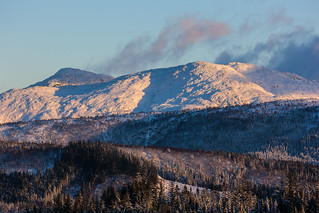 Winter afternoon in the mountain.jpg