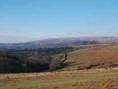 12507259_10153994075895815_9222534169875732269_n (hollyfreyja) Tags: dartmoorr monolithic pentax k50 nature devon england hiking moorland wilderness tors dartmoor national park river bellever forest