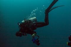_MG_7247 (Stig Sarre) Tags: thistlegorm red sea redsea egypt scuba diving scubadiving dykking wreck vrak