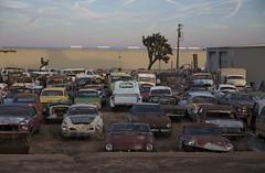 Awesome junkyard in Yucca Valley, CA (vetaturfumare - thanks for 3 MILLION views!!!) Tags: yuccavalley joshuatree junkyard skrotbil 廃車体 wreck rust schrott desert öken california contrail