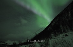 Northern_Lights_21_01_2017_I (LyonelPerabo) Tags: aurora auroraborealis borealis light lights norge north norway northern northnorway nordic northernlight northernlights nord nordnorge arctic polar troms tromsø tromso green grey black night nighttime landscape nature sky skies cloud clouds cloudy winter ice icy snow snowy tree trees forest mountain mountains hill hills horizon lauklines tulleng kattfjord kvaløya kvaloya kvaløy kvaloy island islands coast sea coastal fjord dark darkness 2017 january