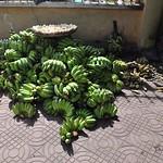 Battambang thumbnail