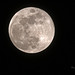 full moon of Paris