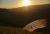 Parapente près du Viaduc de Millau (Michel Seguret Thanks for 11,6 M views !!!) Tags: sunset summer sky france sport nikon sommer coucher himmel viaduct ciel cielo couchant ete millau handgliding d800 larzac parapente viaduc aveyron michelseguret
