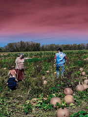 Sent Forth (Eric Baggett) Tags: fall loss kodak ominous pumpkins sentout