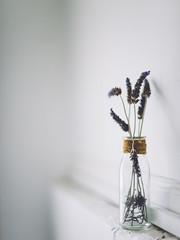 Minimal Lavenders (John.Watson Photography) Tags: life white flower glass still lavender jar nikkor ais f12 d600