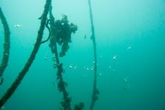 20150926-DSC_6048.jpg (d3_plus) Tags: sea sky fish beach japan scenery underwater diving snorkeling  shizuoka    apnea izu j4  waterproofcase    skindiving minamiizu       nikon1 togai  1030mm nakagi  1  1nikkorvr1030mmf3556pdzoom beachtogai misakafishingport  1030mmpd nikonwpn3 wpn3