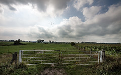 weites Land (glasseyes view) Tags: sky clouds fence landscape geese gate meadows grasslands mecklenburgvorpommern glasseyesview