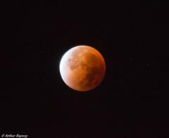 Super Moon (Arthur Ragoucy) Tags: moon eclipse total lunar totallunareclipse astrometrydotnet:status=solved astrometrydotnet:id=nova1267626