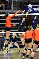 2015 Volleyball SiouxValley v Mobridge-Pollock003 (SD Public Broadcasting) Tags: sports tournament volleyball championships sdpb southdakotahighschoolactivities sdhsaa