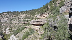 Dwellings in the overhanging cliffs of Walnut Canyon
