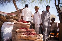 Chillies (ma@vb) Tags: india places mercato ontheroad peperoncini rajasthan