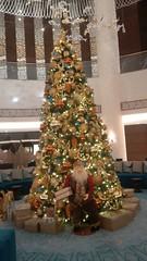Fairmont, Ajman, UAE (11) (niketalamichhane) Tags: out restaurant hotel uae dine fairmont ajman