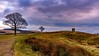 "Lyme Park view to ""The Cage"" (daveduke) Tags: lymepark thecage disley nationaltrust sonya6300 sonyilcea6300 sonyepz1650mm kitlens explored abigfave"