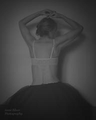 Jeu d'ombre (Shadow play) (l'imagerie poétique) Tags: limageriepoétique poeticimagery tulleskirt crinoline dos back femme chignon shadows ombres