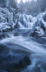 Winter's Grip... (Brad James ~ Nature Photography) Tags: newfoundland winter frozen terrenceville