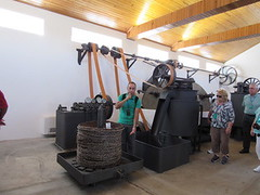 Guiding Olive oil Museum