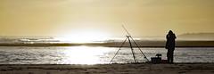 Fisherman silhouette (Halfbike) Tags: alnmouth beachwalking seaside lumixgh4
