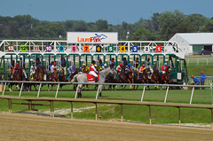 "2015-07-26 (29) And they're off (JLeeFleenor) Tags: photos photography md laurelpark marylandracing marylandhorseracing racing racetrack gate jockey جُوكِي ""赛马骑师"" jinete ""競馬騎手"" dżokej jocheu คนขี่ม้าแข่ง jóquei žokej kilparatsastaja rennreiter fantino ""경마 기수"" жокей jokey người horses thoroughbreds equine equestrian cheval cavalo cavallo cavall caballo pferd paard perd hevonen hest hestur cal kon konj beygir capall ceffyl cuddy yarraman faras alogo soos kuda uma pfeerd koin حصان кон 马 häst άλογο סוס घोड़ा 馬 koń лошадь maryland"