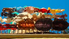 Drying Clothes in Balcony (Ufuk Sha Agun) Tags: blackandwhite color monochrome contrast turkey golf blackwhite balcony balkon perspective tshirt olympus istanbul skirt laundry upskirt passage turkish omd balat etek m43 perspektif siyahbeyaz mft pasaj 1442 bluz amar etekalt bindall microfourthird