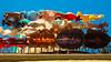 Drying Clothes in Balcony (Ufuk Sha Agun) Tags: blackandwhite color monochrome contrast turkey golf blackwhite balcony balkon perspective tshirt olympus istanbul skirt laundry upskirt passage turkish omd balat etek m43 perspektif siyahbeyaz mft pasaj 1442 bluz çamaşır etekaltı bindallı microfourthird