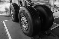 Concorde wheels (Francis Mansell) Tags: monochrome rain wheel blackwhite outdoor aircraft aeroplane concorde tyre weybridge brooklands undercarriage brooklandsmuseum
