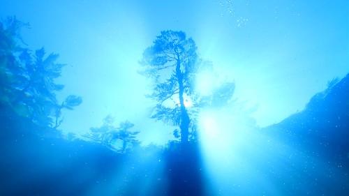 Phillips Lake Light Rays - S Underwood