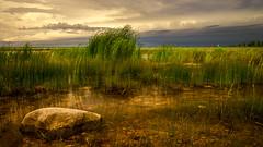 lighthouse (JimfromCanada) Tags: sun ontario storm green water rain weather rock clouds reeds weeds nikon waterfront pebbles shore shallow southampton portelgin saugeen d800 jimsmith jimfromcanada