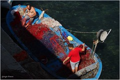 costa del salento (Giorgio Finessi) Tags: italy olympus gallipoli puglia sud costadelsalento