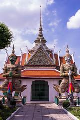 Les religions - et en Asie, différents courants de bouddhisme