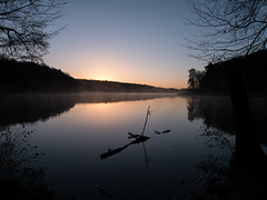 First daylight at the lake (Botterbloom) Tags: nature sunrise germany landscape deutschland natur panasonic landschaft sonnenaufgang schleswigholstein mlln ltauersee lumixgvario1232mm lumixgm5