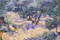 Nelson-Atkins Museum-25 (Rhett Jefferson) Tags: nelsonatkinsmuseumofart oliveorchard vincentvangogh