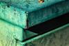 Corner - Explored (drpeterrath) Tags: hmm macromondays corner canon eos5dsr 5dsr green outdoor color depthoffield losangeles naturallight macro closeup wow