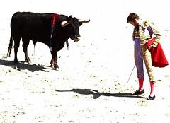 Desplante (aficion2012) Tags: arles novillada septembre 2016 blohorn jalabert corrida france francia andy younes novillero faena toros bull fight bullfight toreaux desplante