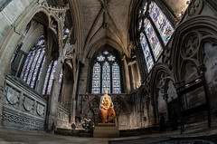 The Virgin Mary (Stephen Reed) Tags: virginmary lincolncathedral d7000 nikon lightroomcc church fisheye samyang