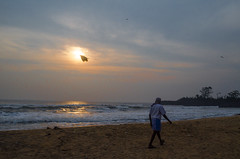 Let's Fly (Ivon Murugesan) Tags: animal animals beach horse horseride india letsexplore light mamallapuram morning nature ocean outdoor people places river sea seashore sunlight sunrise sunshine travel water waterscapes sun flickrtravelaward