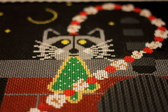 December 10 2016 Saturday (interchangeableparts) Tags: project365 charleyharper needlepoint lameoshot becauseiwas moreintrested institching thanshooting