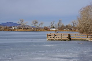 Coot Lake Frozen