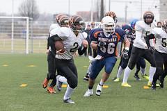 4D3A3061 (marcwalter1501) Tags: minotaure tigres strasbourg footballaméricain football sportdéquipe sport exterieur match nancy