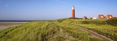 The path leads to the symbol of Texel (B℮n) Tags: texel lighthouseoftexel dunesoftexelnationalpark vuurtorenvantexel schotsehooglanders highlandcattle dunes dutchisland islandoftexel mooitexel kyloe scottishbreed cocksdorp moon vuurtoren eierland symbol nederland holland island grass dune beach sea waddenzee maan vuurtorendorp 1864 village scenery landscape panorama path red rood symbool bier blue sky tourist spot national park zeestroming 100faves topf100