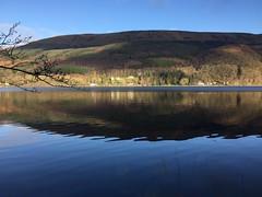 2017/365/2 Loch Ard Reflection (troutcolor) Tags: lochard walk 2017365