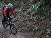 P1050430 (wataru.takei) Tags: mtb lumixg20f17 mountainbike trailride miurapeninsulamountainbikeproject