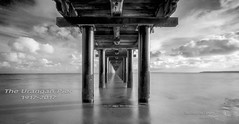 The  Iconic Urangan Pier (THE SMOKING CAMERA HeRvEy BaY davefryer) Tags: uranganpier herveybayiconic queensland australia longexposer ndfilter hitechfilters piers jetty ocean seaside fraserisland subtropics holiday vacation frasercoast