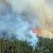 Incendios en Vichuquen / Chile