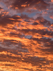 20170124-202752-20170124-_1240292 (timhughes) Tags: 2017 canberra january sunset