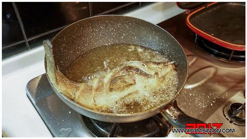 石斑魚09.jpg