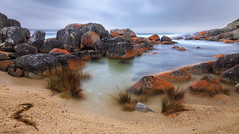 Skeleton Bay (djryan78) Tags: rock spring landscape sigma pacificocean bay outdoor canon canon6d 24105 sea sigma24105 6d australia rocks ocean wet cold skeletonbay water morning longexposure seascape tasmania bayoffires dslr binalongbay au