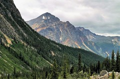 Glaciated (Patricia Henschen) Tags: jasper nationalpark jaspernationalpark canada parks parcs mountain mountains rocky rockies northern clouds alberta glaciated glacier boreal forest cloudy canadian nationalparks