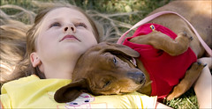 Layin' Around (Domain Barnyard) Tags: summer dog love girl kid flickr quiet child young dressup canine 2006 dachshund doggy resting helloworld tingey domainbarnyard