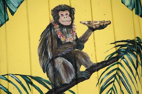 monkeys love pizza!